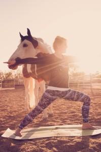 teri undreiner horse